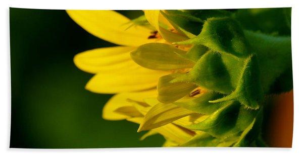 Sunflower Morning Hand Towel