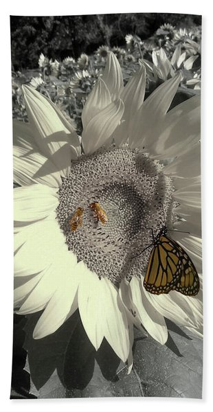 Sunflower Tint Hand Towel