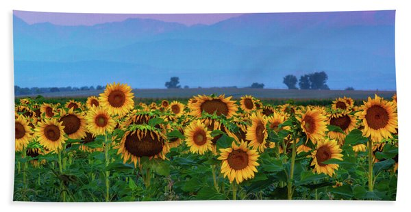 Hand Towel featuring the photograph Sunflowers At Dawn by John De Bord