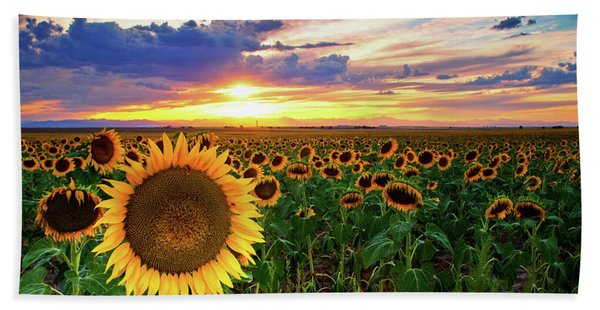 Hand Towel featuring the photograph Sunflowers Of Golden Hour by John De Bord