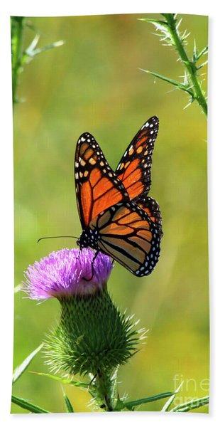 Sunlit Monarch  Hand Towel