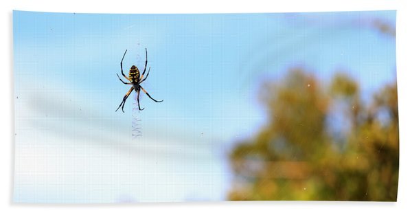 Suspended Spider Hand Towel