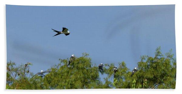 Swallow-tailed Kite Flyover Bath Towel