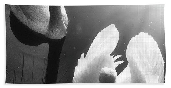 Swan Lake In Winter -  Kingsbury Nature Bath Towel