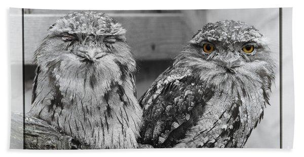 Tawney Frogmouths Bath Towel