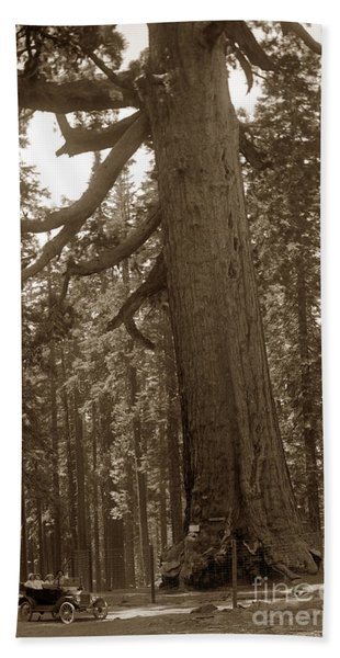The Grizzly Giant Is A Giant Sequoia In Mariposa Grove Is In Yosemite Circa 1916 Bath Towel