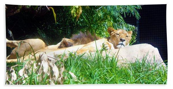 The Lion Awakes Bath Towel