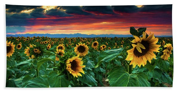 Hand Towel featuring the photograph The Summer Winds by John De Bord