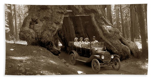 The Wawona Tree Mariposa Grove, Yosemite  Circa 1916 Bath Towel