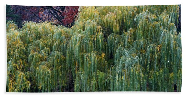 Bath Towel featuring the photograph The Willows Of Central Park by Lorraine Devon Wilke