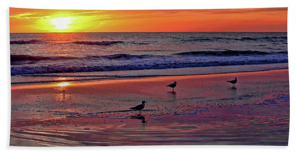Three Seagulls On A Sunset Beach Hand Towel
