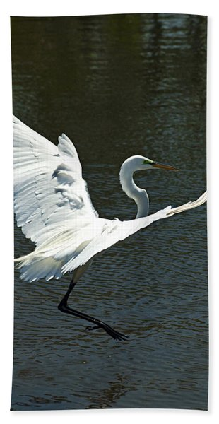 Bath Towel featuring the photograph Time To Land by Carolyn Marshall