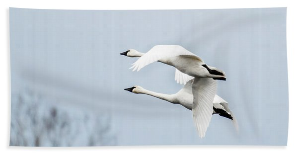 Tundra Swan Lift-off Bath Towel