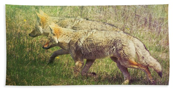 Two Coyotes Hand Towel