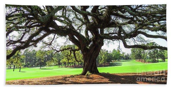 Under An Augusta Oak Hand Towel