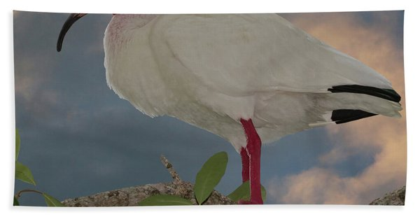 Bath Towel featuring the photograph White Ibis by Larry Linton