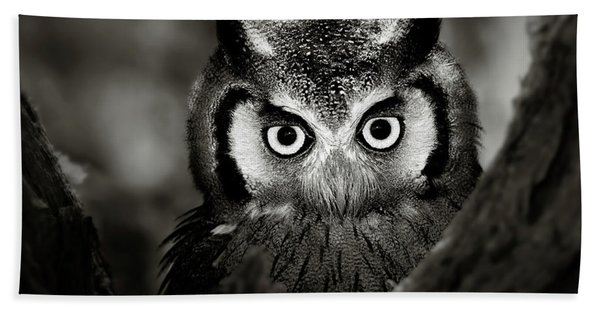 Whitefaced Owl Hand Towel