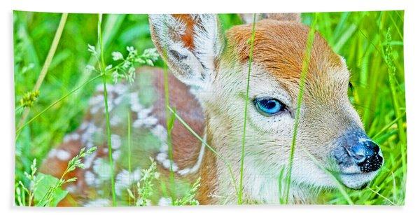 Whitetailed Deer Fawn Bath Towel