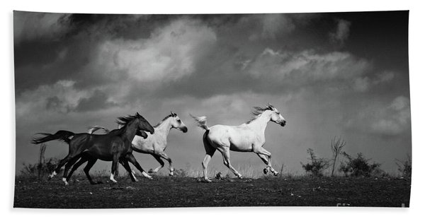 Wild Horses - Black And White Hand Towel