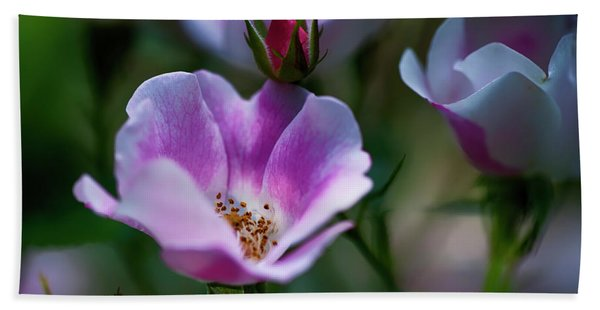 Wild Rose 7 Hand Towel