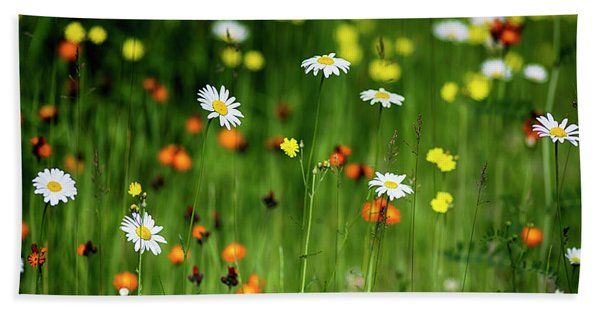 Wildflowers2 Hand Towel