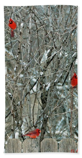 Winter Cardinals Hand Towel