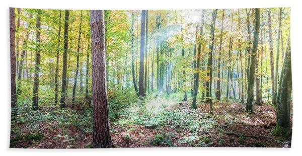 Woodland In Fall Bath Towel