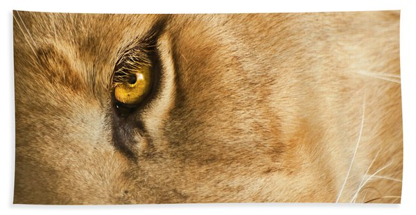 Bath Towel featuring the photograph Your Lion Eye by Carolyn Marshall