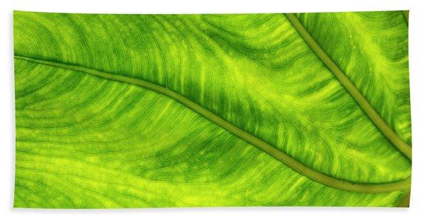 Leaf Design Bath Towel