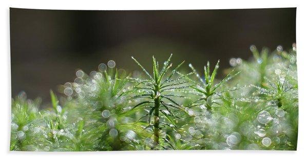 Moss Hand Towel