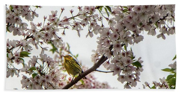 A Canary In A Cherry Tree  Bath Towel