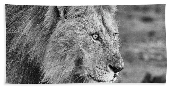 A Monochrome Male Lion Hand Towel