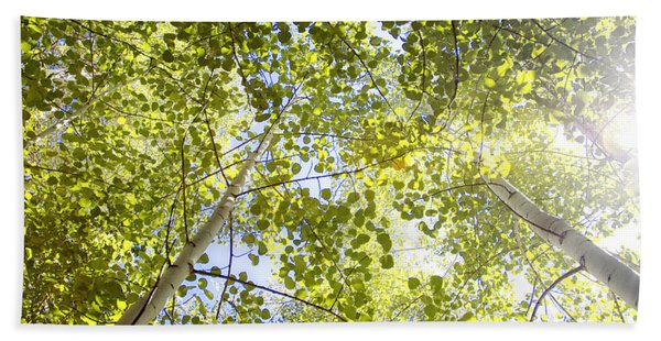 Aspen Canopy With Sun Flare Hand Towel