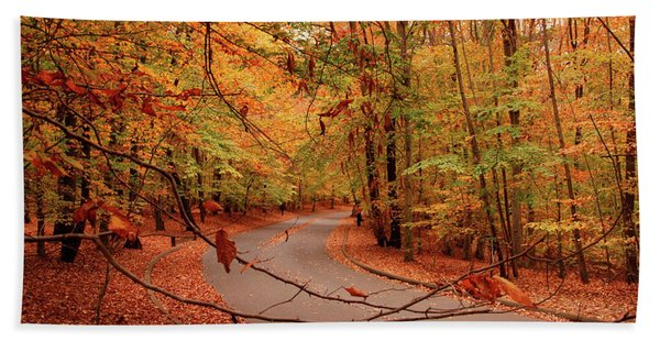 Autumn In Holmdel Park Hand Towel
