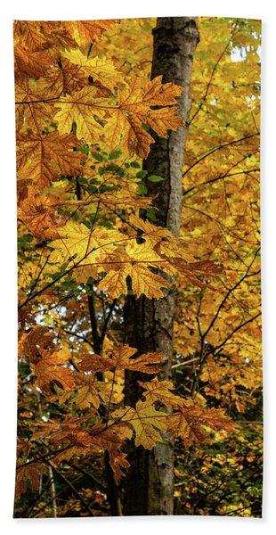 Autumn Leaves Bath Towel