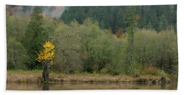 Beaver Pond Reflected Bath Towel