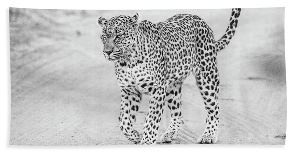 Black And White Leopard Walking On A Road Bath Towel