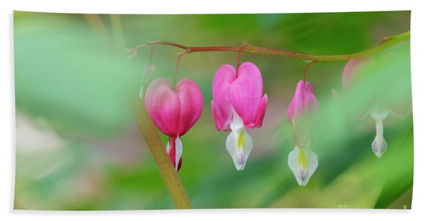Bleeding Heart Flowers  Bath Towel