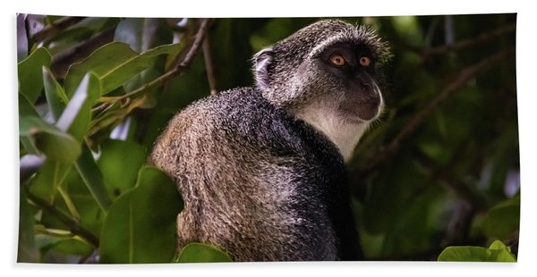 Blue Monkey, Zanzibar Bath Towel