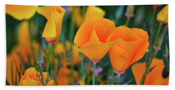 California Poppies Lake Elsinore Hand Towel