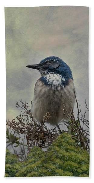 Bath Towel featuring the photograph California Scrub Jay - Vertical by Patti Deters