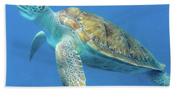 Close Up Sea Turtle Hand Towel