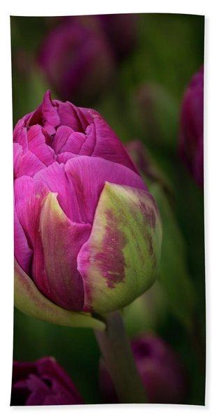Closed Pink Tulip Bath Towel