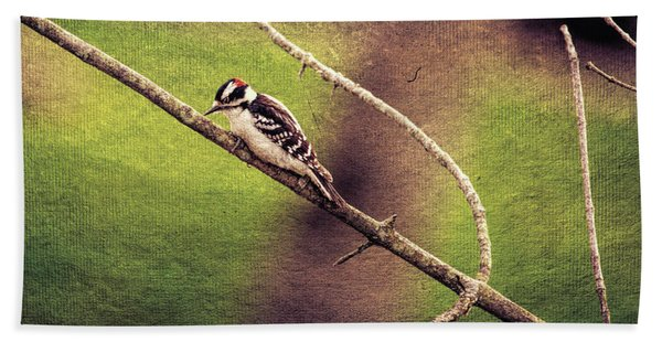 Faded Canvas Woodpecker Bath Towel
