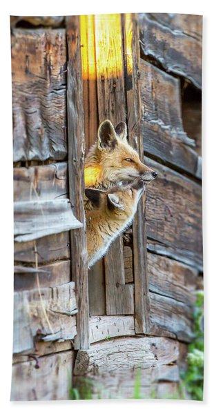 Fox Test  Hand Towel