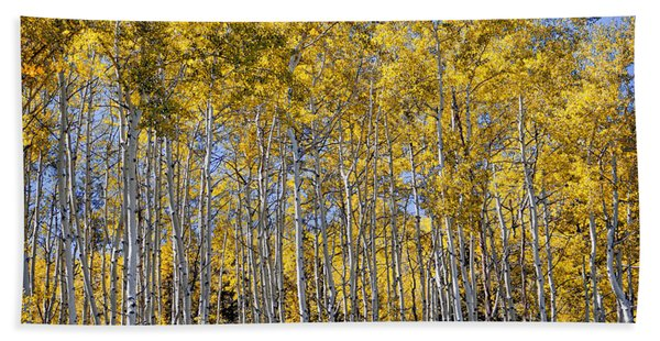 Golden Aspen Grove Hand Towel