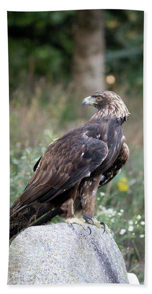 Golden Eagle On Rock 92515 Bath Towel