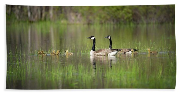 Goose Family #5 Hand Towel