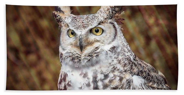 Bath Towel featuring the photograph Great Horned Owl Portrait by Patti Deters