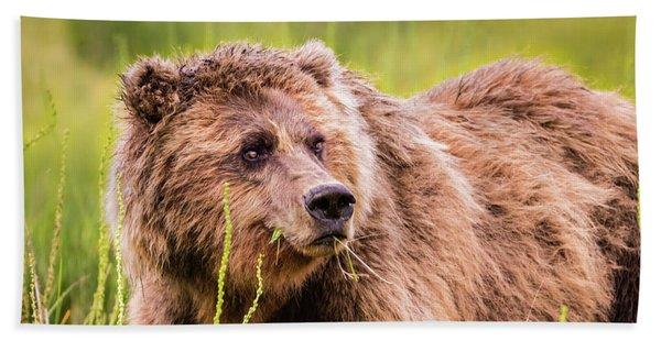 Grizzly In Lake Clark National Park, Alaska Bath Towel